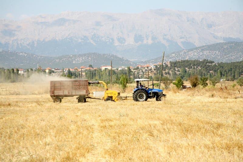 Agricultura e trator imagem de stock