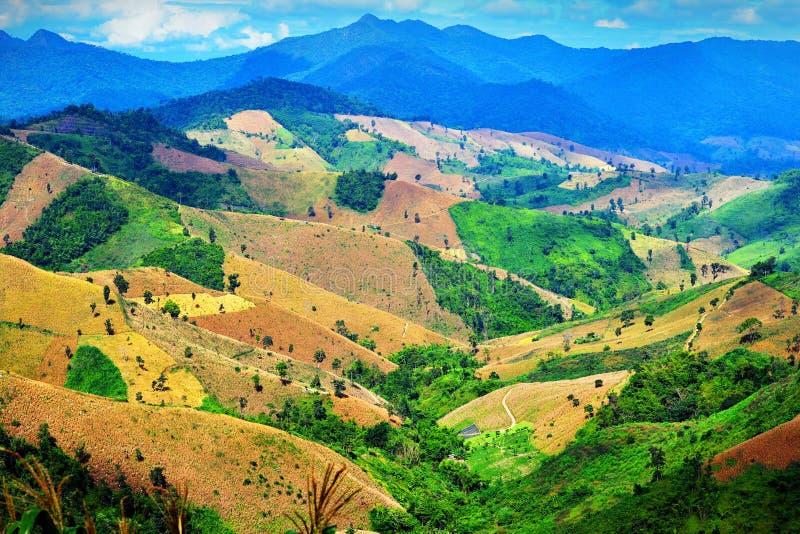 Agricultura em montanhas altas imagem de stock royalty free