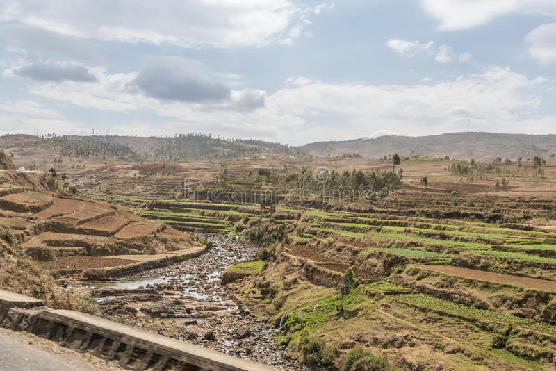 Agricultura en Madagascar foto de archivo