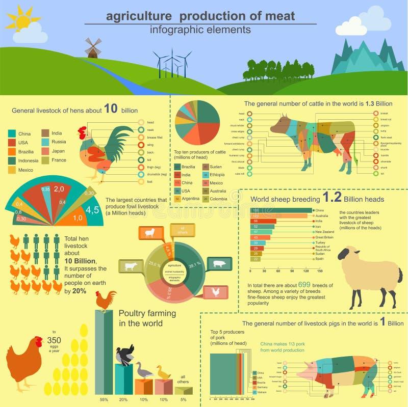 Agricultura, infographics da produção animal, ilustrações do vetor ilustração royalty free