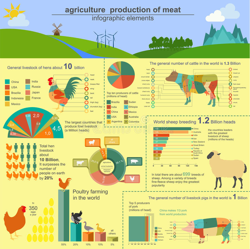 Agricultura, infographics de la cría de animales, ejemplos del vector libre illustration