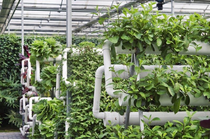 Agricultura moderna imagem de stock royalty free