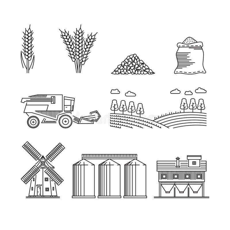 Agricultura para o centeio crescente do trigo dos cereais ilustração stock