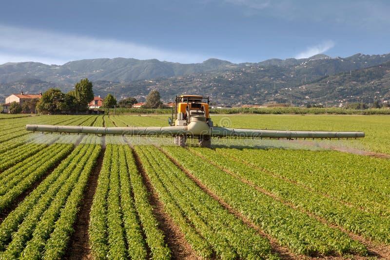 Agricultura, pesticidas de rociadura del tractor en granja del campo foto de archivo