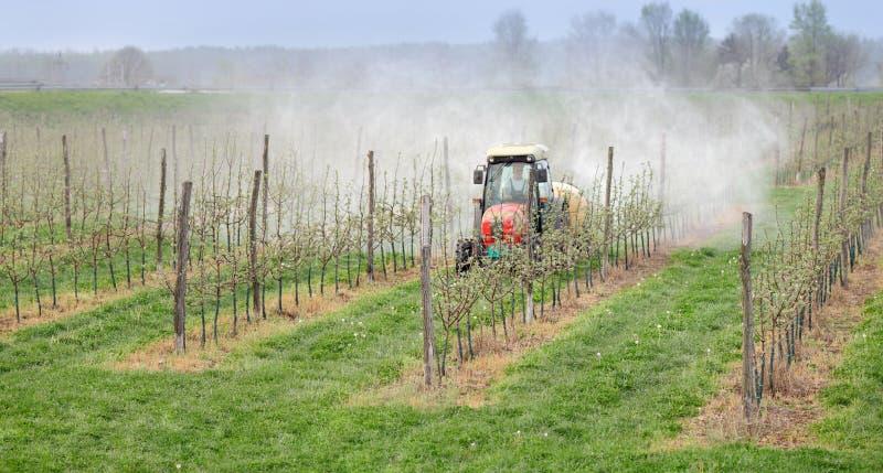 Agricultura, pulverização das árvores imagem de stock royalty free
