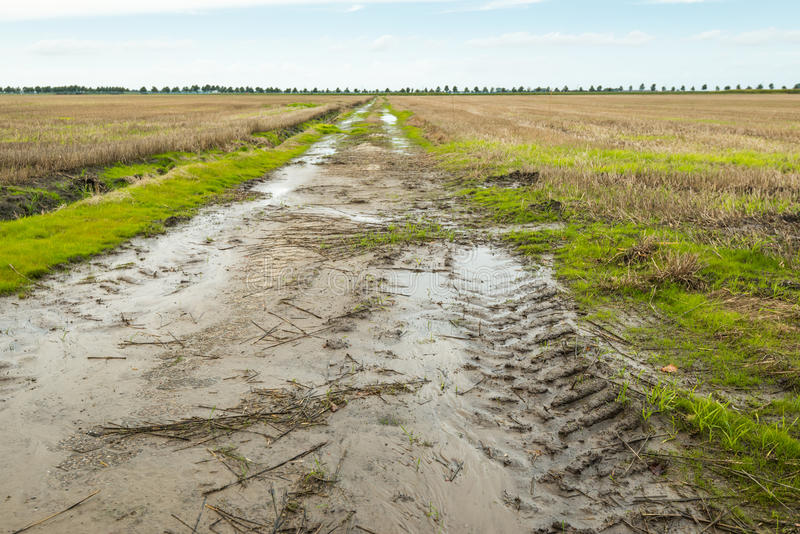 Agricultural area after prolonged rain. Muddy path with a tractor track in an agricultural landscape royalty free stock photos