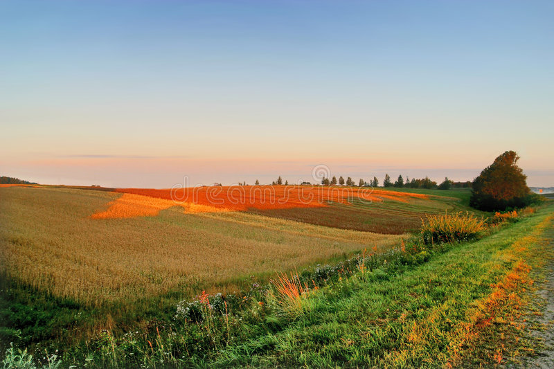 Agricultural autumn field royalty free stock photography