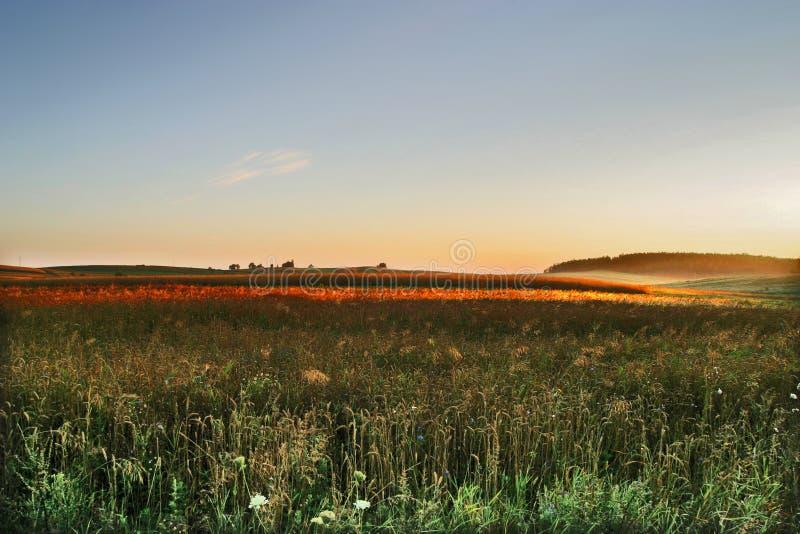 Agricultural autumn field stock photos