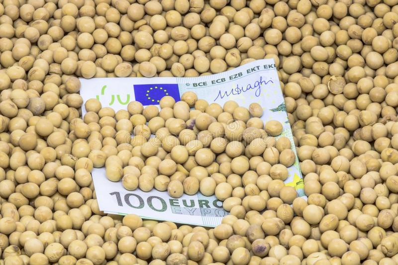 Euro banknote with soybean background. Agricultural concept, soybean at 100 Euro banknote stock photos