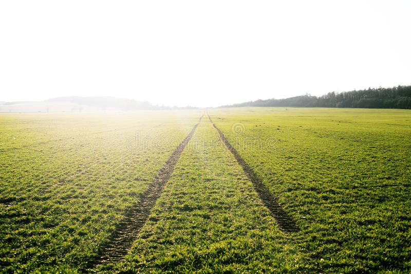 Agricultural fields. Spring time. Traces in land from the tractor. Sunset stock photography