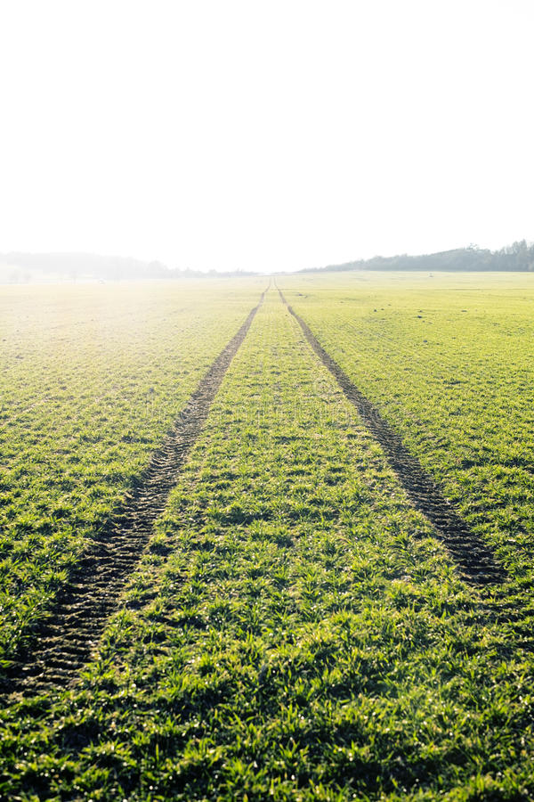 Agricultural fields. Spring time. Traces in land from the tractor. Sunset stock image