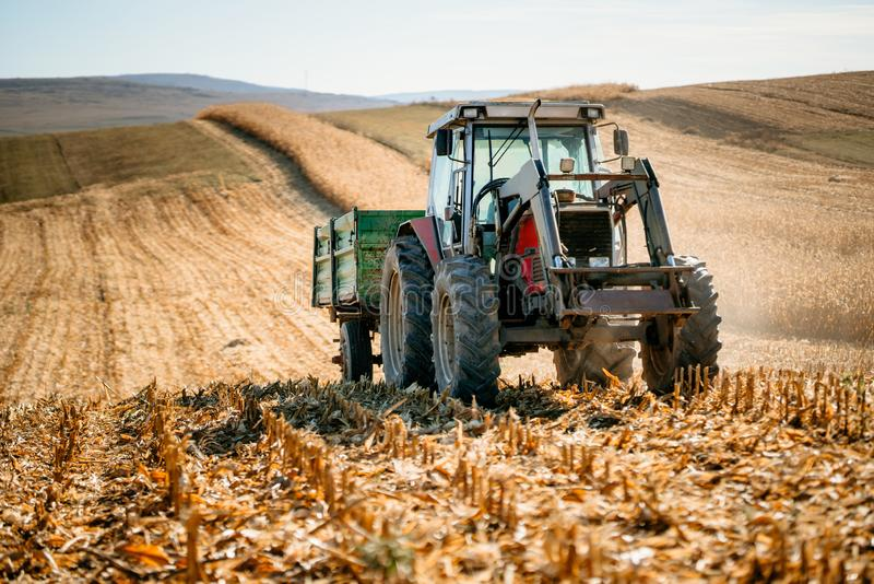 Agricultural industy - Industrial Tractor with trailer working the corn fields and harvesting during fall season. Agricultural industy - Industrial Tractor with royalty free stock image