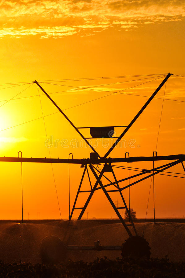 Agricultural Irrigation Sprinkler royalty free stock images