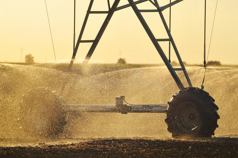 Agricultural Irrigation Sprinkler royalty free stock photo