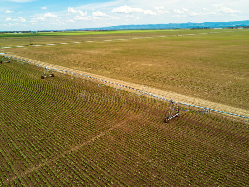 Agricultural irrigation system on cultivated sugar beet plantation, drone pov royalty free stock photos