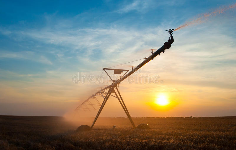 Agricultural irrigation system watering field of ripe wheat on s stock photography