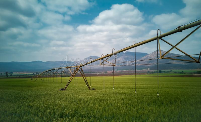 Agricultural irrigation system watering a green wheat field. Agricultural irrigation system watering a wheat field royalty free stock images
