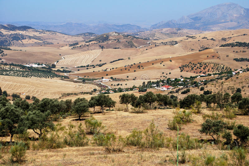 Agricultural land, Andalusia. stock images