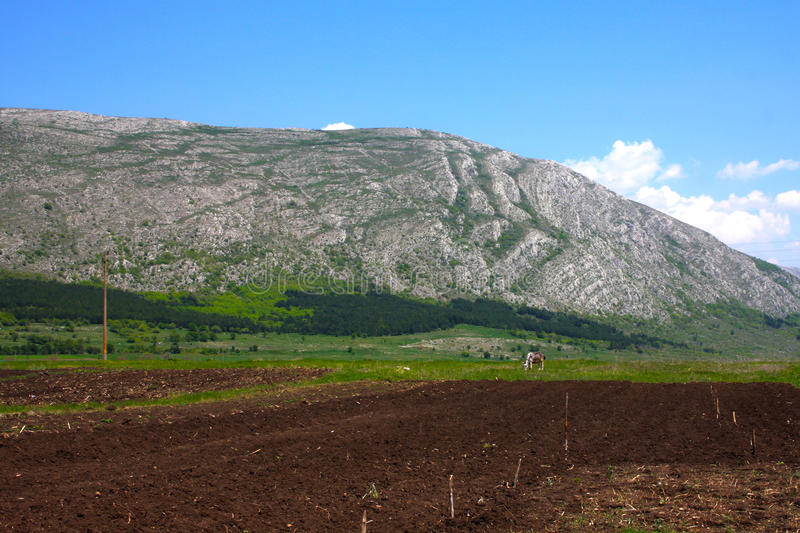Download Agricultural Land Royalty Free Stock Images - Image: 33416199