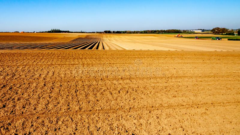 Agricultural land for planting vegetables with tractors in the background. With land for cultivation and land cultivated with potatoes on a sunny day in Oensel stock image