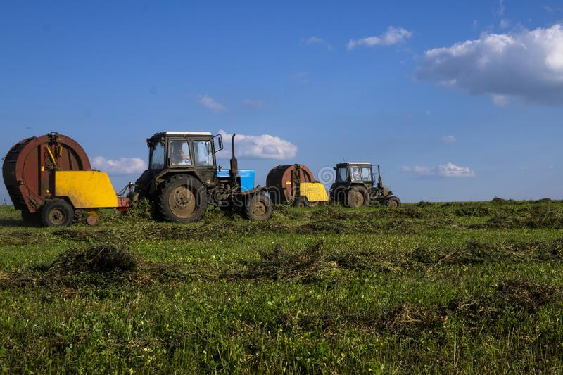 Agricultural machinery, a tractor collecting grass in a field against a blue sky. Hay harvesting, grass harvesting. Season. Harvesting, grass, agricultural land stock images