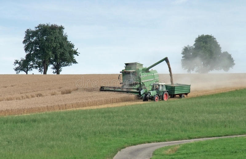 Harvesting harvester on a crop field. Agricultural scenery showing a green harvester at the edge of a crop field while harvesting at summer time in Southern stock photo