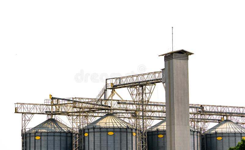 Agricultural silo at feed mill factory. Flat silo for store and drying grain, wheat, corn at farm. Storage of agricultural product royalty free stock image
