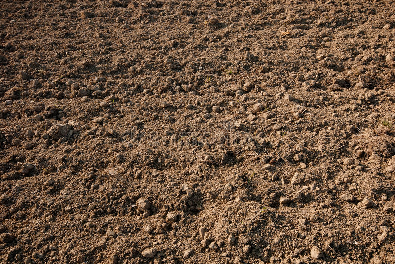 Agricultural soil. The agricultural soil without plants stock photo