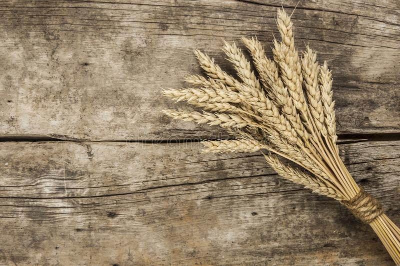 Agricultural still life from ears of wheat on a wood background. royalty free stock photos