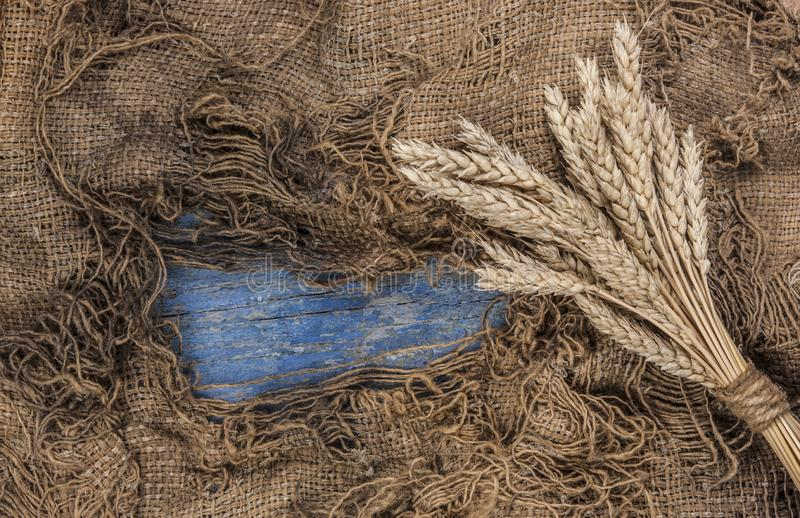 Agricultural still life from ears of wheat on a wood background stock photos