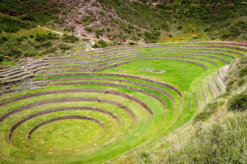 Agricultural terraces in Moray, Cusco, Peru royalty free stock images