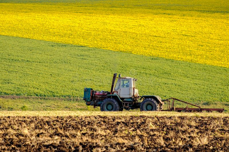 An agricultural tractor plows a field with a plow after harvested wheat. In the background are fields of sunflowers. An agricultural tractor in the evening sun stock image