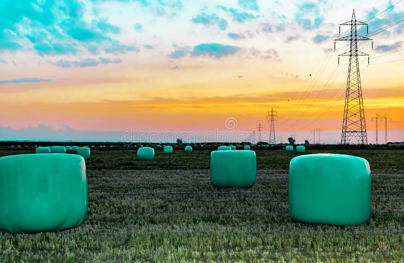 Agricultural work in a field at sunset. Equipment for forage. Film wrapping system. Round bales of feed for farm animals.  royalty free stock images
