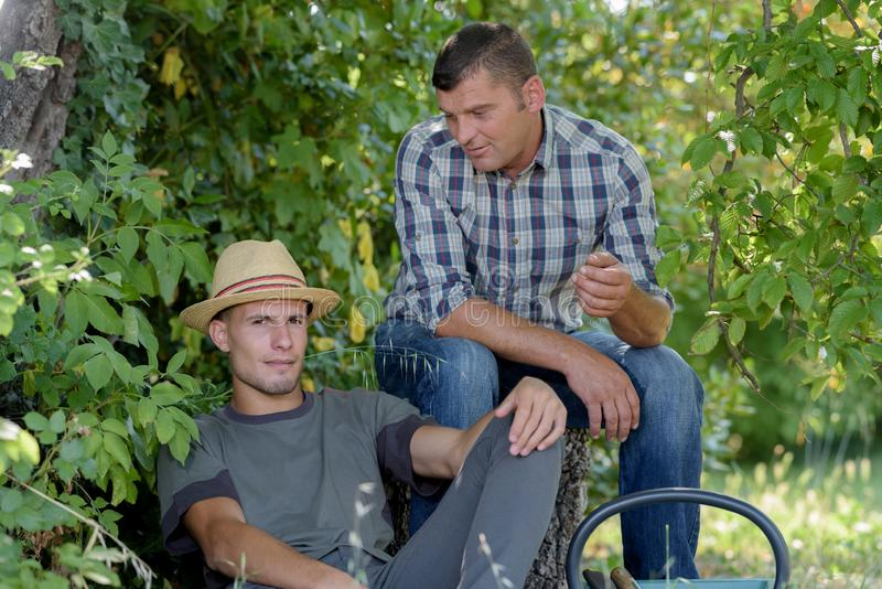 Agricultural workers having rest. Agricultural workers having a rest stock photos