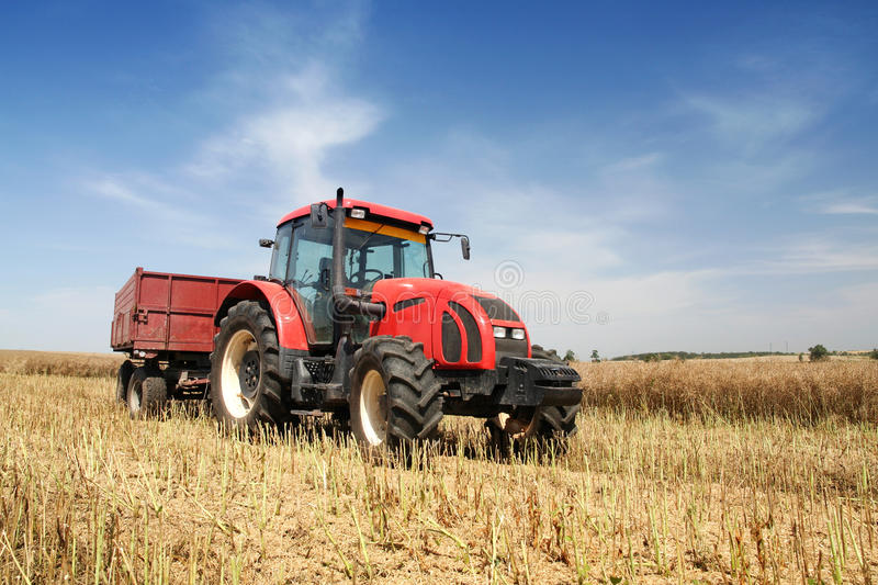 Agriculture. Tractor on the field with harvested corn royalty free stock photo