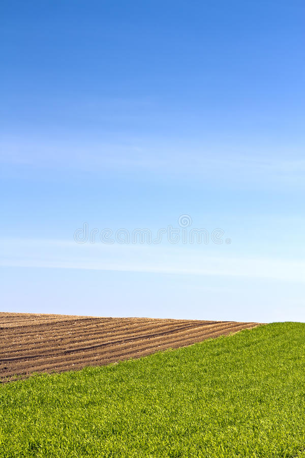 Download Agriculture stock image. Image of rural, agriculture - 24099241