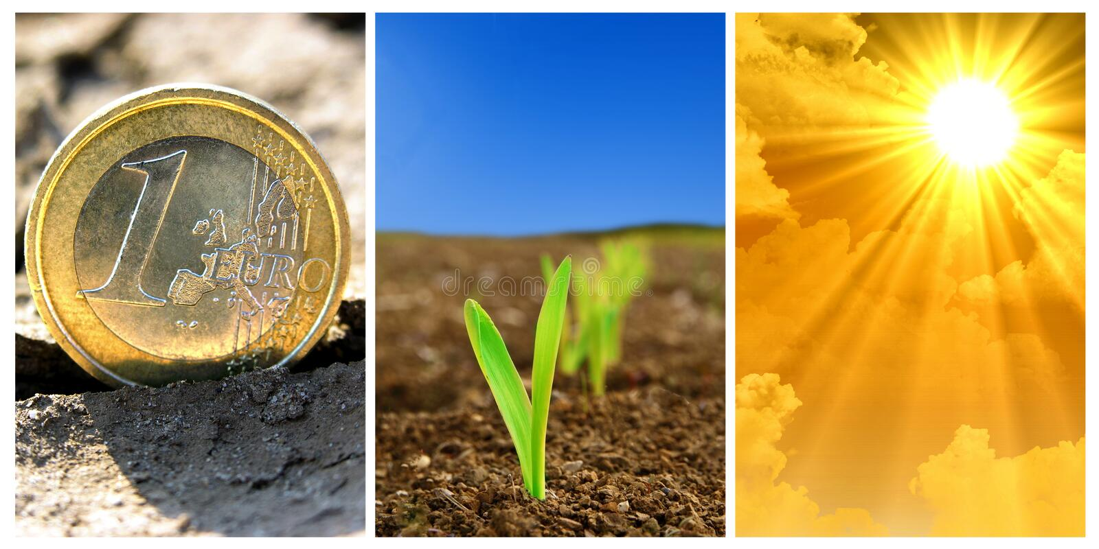 Agriculture stock photos