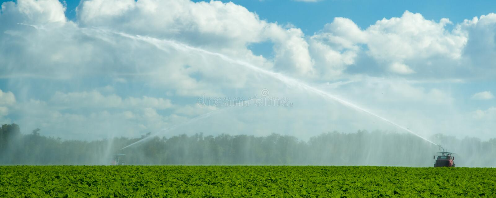 Trucks irrigating green field. Scenic view of trucks irrigating green field in countryside with cloudscape background royalty free stock photography