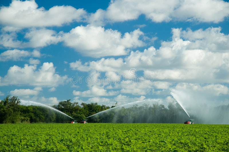 Irrigating crops in field. Scenic view trucks irrigating crops in green countryside field royalty free stock image