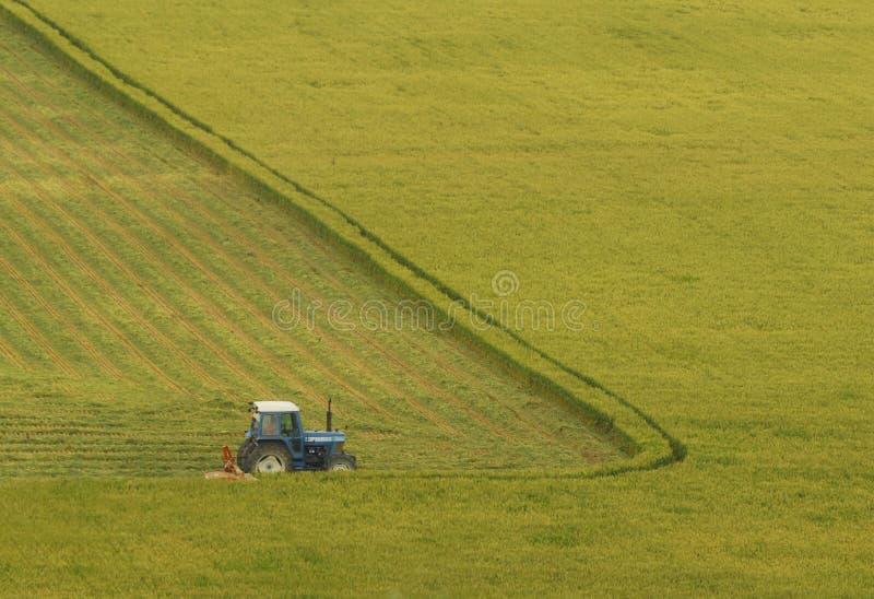 Download Agriculture stock image. Image of deere, grain, combines - 6200423