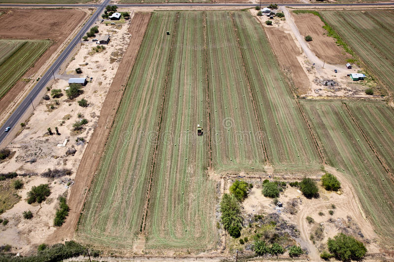 Agriculture Aerial royalty free stock photography