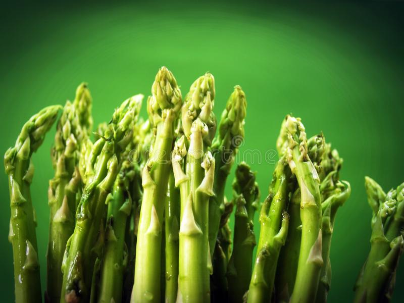 Agriculture, Asparagus, Bunch royalty free stock images