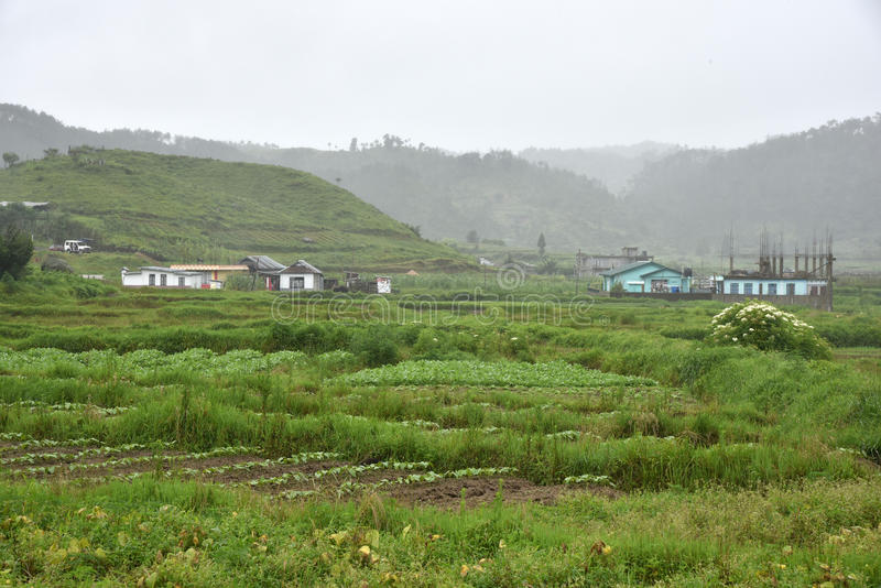 Agriculture chez Meghalaya photo stock