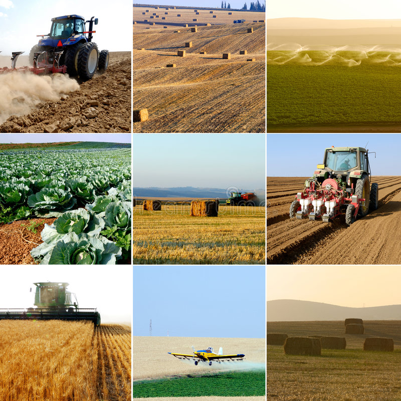 Agriculture collection royalty free stock image