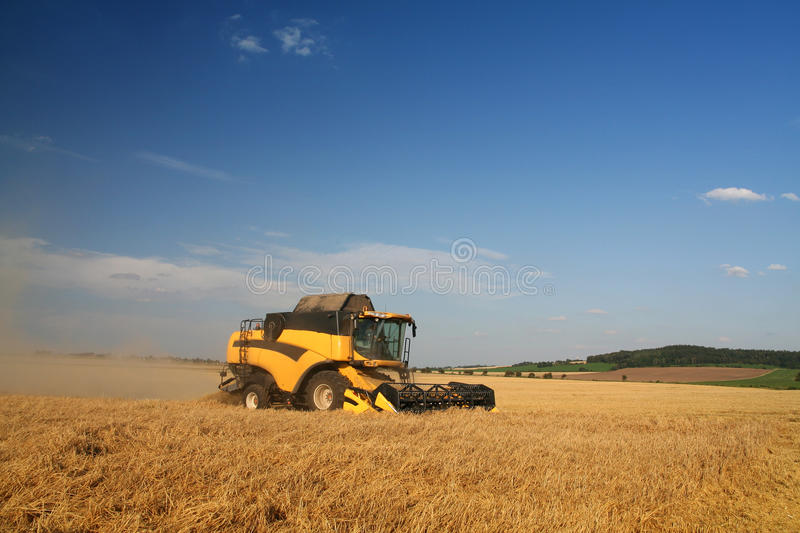 Agriculture - Combine. (harvester) on the field stock image