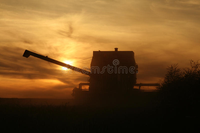 Agriculture - combine. Combine on the field in sunset stock photography