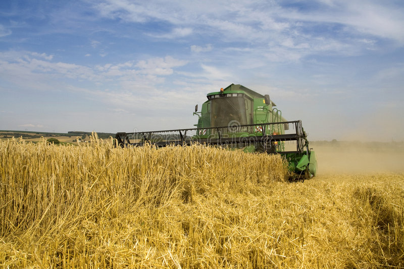 Agriculture - Combine. (harvester) on the field stock images
