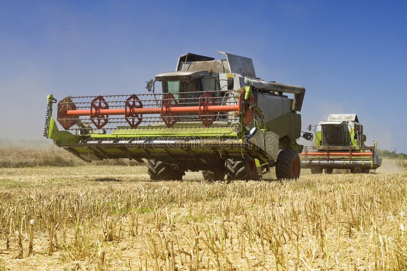 Agriculture - Combines. (harvesters) on the field stock image