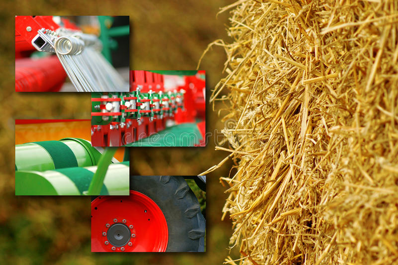 Agriculture Concept Stock Photography