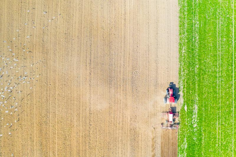 Agriculture concept. Tractor cultivating farmland aerial landscape. Birds in field stock image